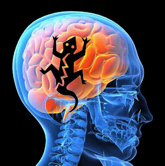 Debemos cuidarnos de los comportamientos de cerebro reptiliano.